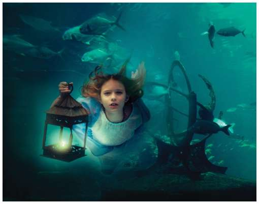 15 Amazing Underwater Photos - LogoMyWay Blog